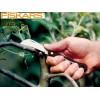 """FISKARS 125880 - Нож за присаждане (косер) подобен на кука """"SOLID K62"""", Дължина: 17 cm"""