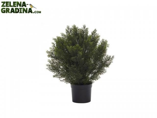 """B234Z-32020-GS108 - Изкуствен храст """"КЕДЪР"""" в саксия, Размер на растението: 61 cm, Размер на саксията: 17 cm"""